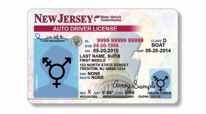 New Jersey driver's license